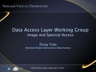 Data Access Layer Working Group Image and Spectral Access