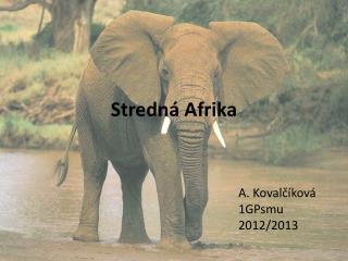 Stredná Afrika