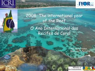 2008: The international year of the Reef  O Ano Internacional dos Recifes de Coral