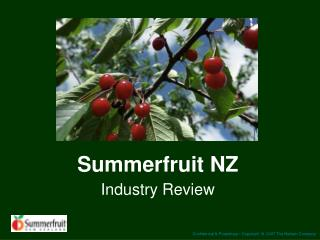 Summerfruit NZ Industry Review