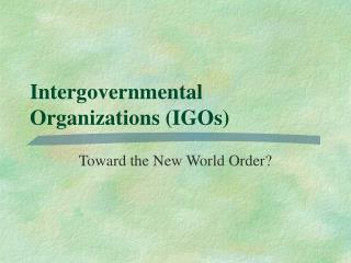 Intergovernmental Organizations (IGOs)