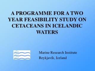 A PROGRAMME FOR A TWO YEAR FEASIBILITY STUDY ON CETACEANS IN ICELANDIC WATERS