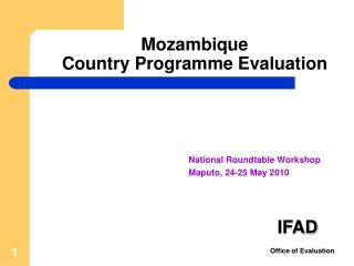 Mozambique      Country Programme Evaluation