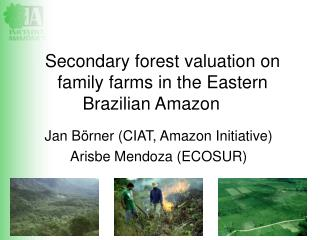 Secondary forest valuation on family farms in the Eastern Brazilian Amazon