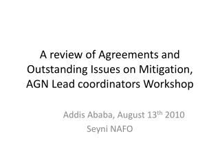 A review of Agreements and Outstanding Issues on Mitigation, AGN Lead coordinators Workshop
