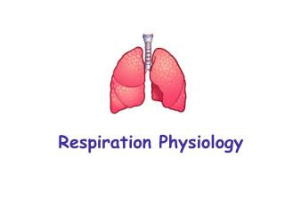 Respiration Physiology