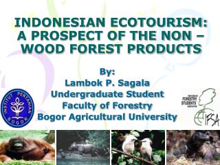INDONESIAN ECOTOURISM:  A PROSPECT OF THE NON – WOOD FOREST PRODUCTS