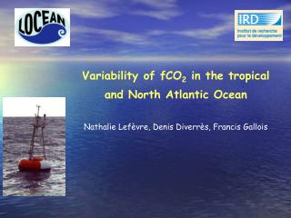 Variability of fCO 2  in the tropical and North Atlantic Ocean