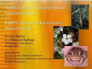 North American Invasive Species Information Hub and