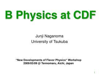 B Physics at CDF