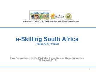 e-Skilling South Africa Preparing for Impact