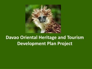 Davao Oriental Heritage and Tourism Development Plan Project