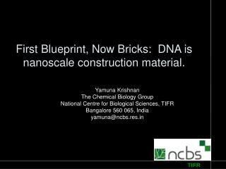 First Blueprint, Now Bricks:  DNA is nanoscale construction material.