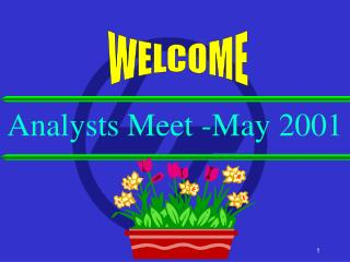 Analysts Meet -May 2001