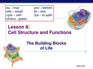 Lesson 8: Cell Structure and Functions