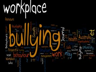 Do we really need another review of the workplace bullying literature