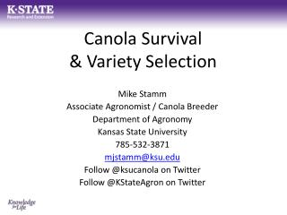 Canola Survival & Variety Selection
