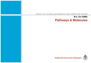 Pathways & Molecules