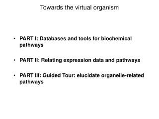 Towards the virtual organism