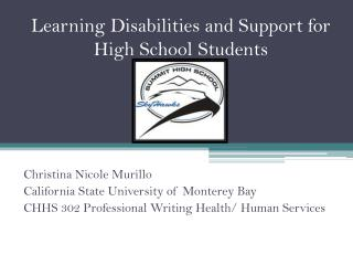 Learning Disabilities and Support for High School Students