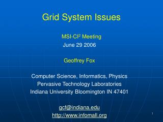 Grid System Issues MSI-CI 2  Meeting