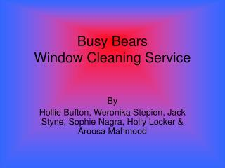 Busy Bears  Window Cleaning Service