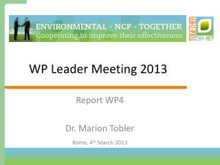WP Leader Meeting 2013