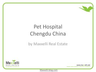 Pet hospital chengdu