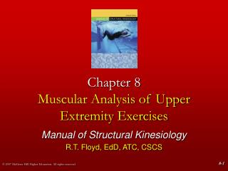 Chapter 8 Muscular Analysis of Upper Extremity Exercises