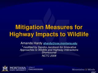 Mitigation Measures for Highway Impacts to Wildlife