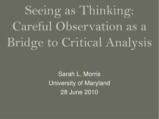 Seeing as Thinking:  Careful Observation as a Bridge to Critical Analysis