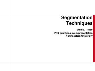 Segmentation Techniques Luis E. Tirado PhD qualifying exam presentation  Northeastern University