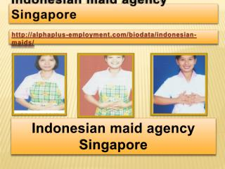 Indonesian maid agency Singapore
