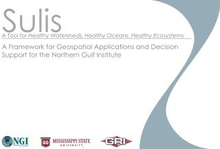 A Framework for Geospatial Applications and Decision Support for the Northern Gulf Institute