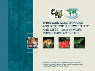 ENHANCED COLLABORATION AND SYNERGIES BETWEEN ITTO AND CITES – 2006-07 WORK PROGRAMME ACTIVITIES