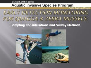 Early Detection Monitoring for Quagga & Zebra Mussels :