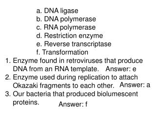a. DNA ligase 		b. DNA polymerase 		c. RNA polymerase 		d. Restriction enzyme
