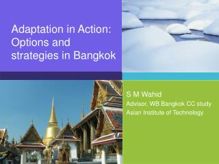 Adaptation in Action: Options and strategies in Bangkok