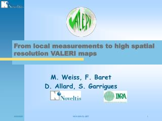 From local measurements to high spatial resolution VALERI maps