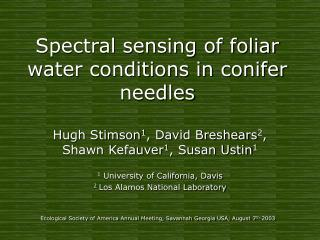 Spectral sensing of foliar water conditions in conifer needles