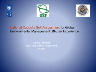 National Capacity Self Assessment  for Global Environmental Management: Bhutan Experience