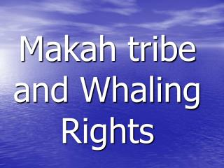 Makah tribe and Whaling Rights