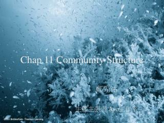 Chap.11 Community Structure