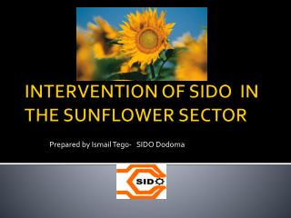 INTERVENTION OF SIDO  IN THE SUNFLOWER SECTOR