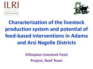 Ethiopian Livestock Feed  Project, Beef Team