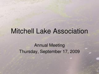 Mitchell Lake Association