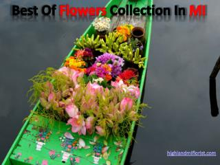 Best Of The Finest Flowers Collection In MI