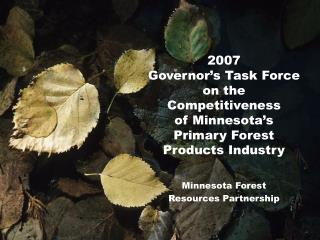 Minnesota Forest  Resources Partnership