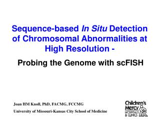 Probing the Genome with scFISH