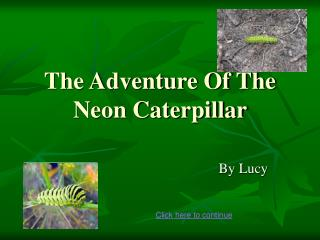 The Adventure Of The Neon Caterpillar